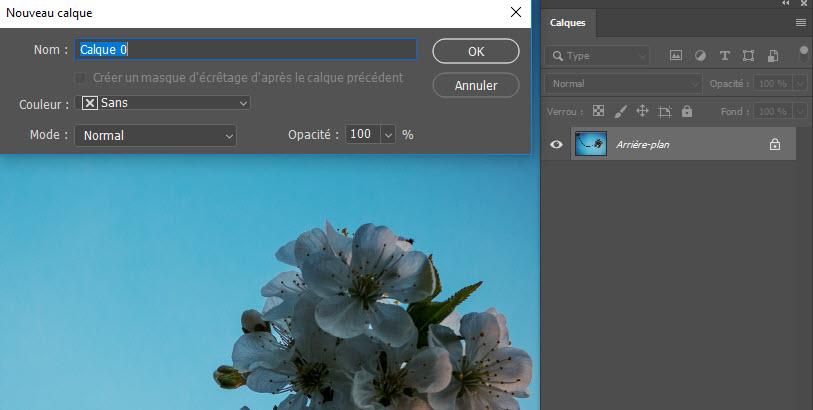 Redimensionner Une Image Sur Photoshop Mettre A L Echelle Sensible